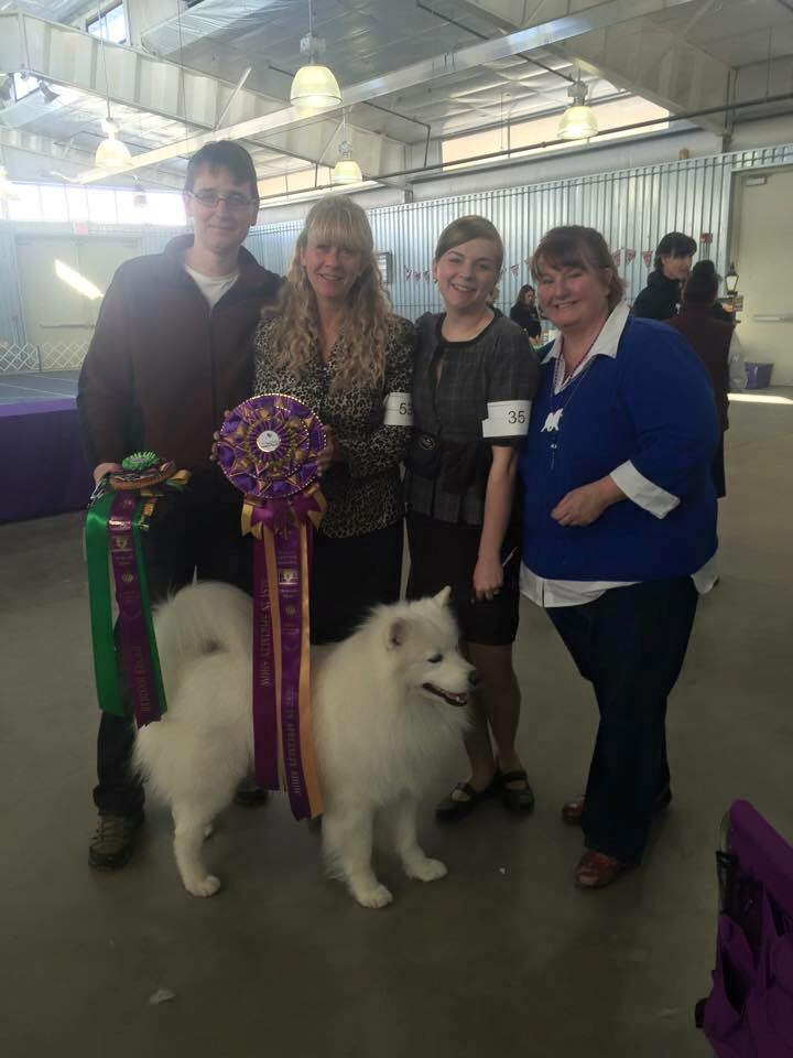 Best in Show Samoyed Denver Specialty 2015